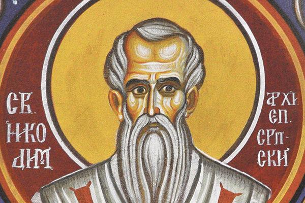 Свети Никодим, Архиепископ српски